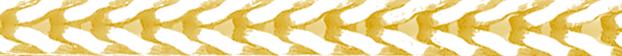 Gouden vossenstaart ketting